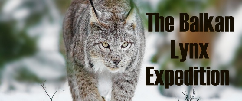 BALKAN LYNX EXPEDITION